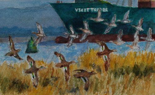 Close up of salt marsh sketch - Teal flying past the Vecht Trader