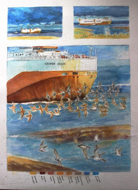 Salt marsh sketches of the Grande Sicilia with ringed plover and dunlin